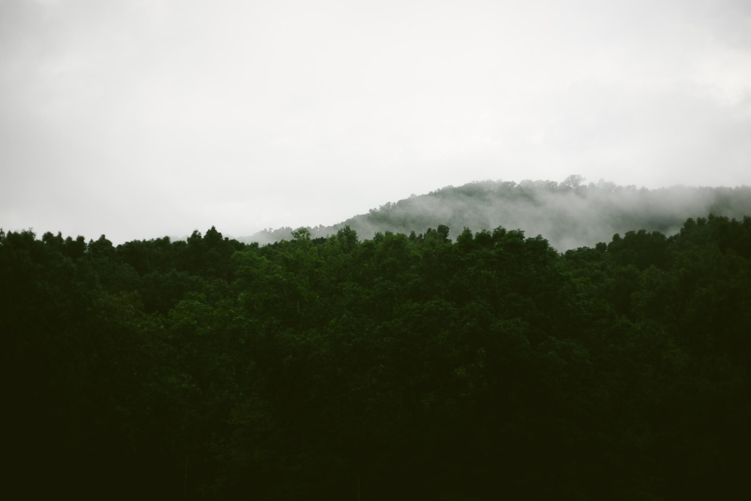 Kiyah C Photography-Atlanta Lifestyle Photographer-Nashville-3492.jpg