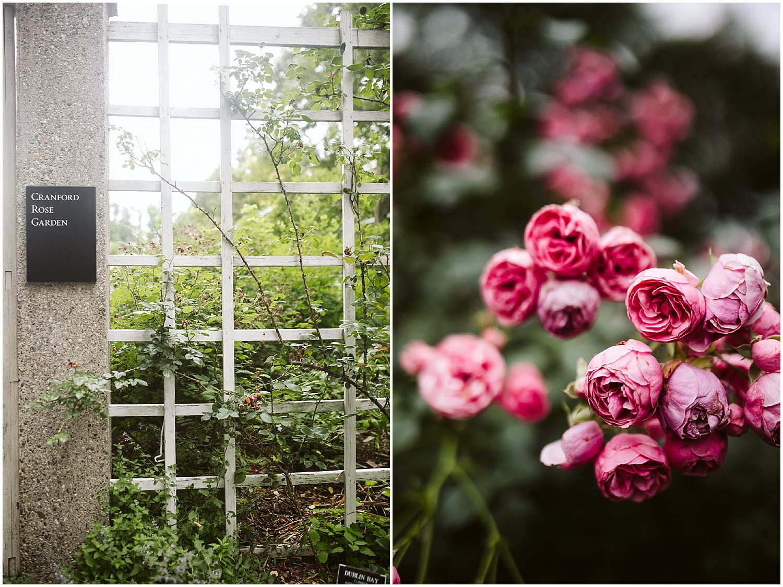 brooklyn botanic garden cranford rose garden