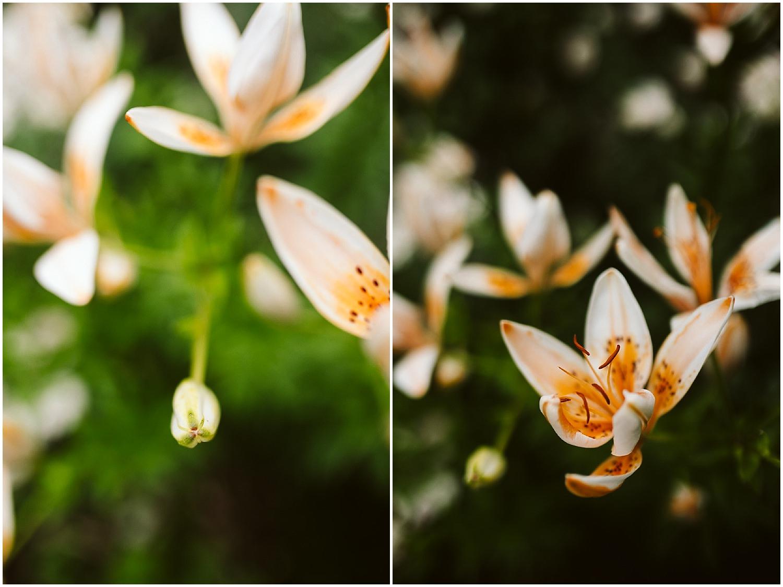 budding flowers at brooklyn botanic garden wedding