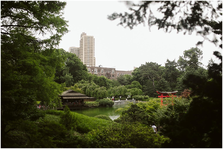 japanese pond view at brooklyn botanic garden