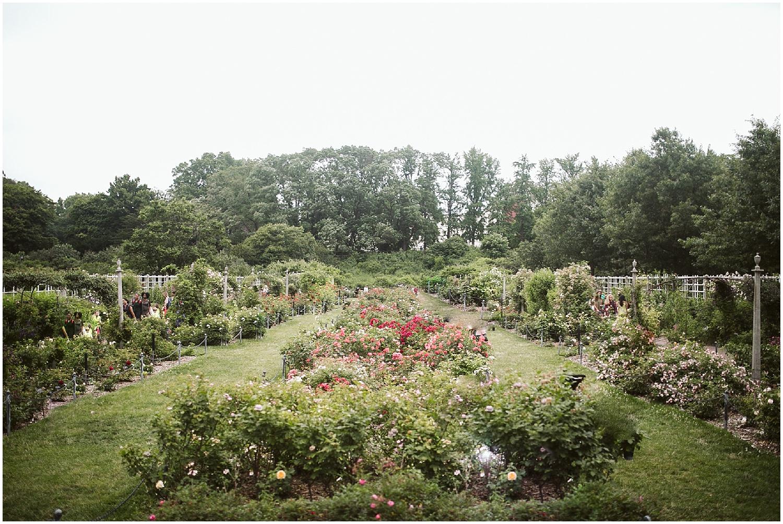 outdoor wedding at brooklyn botanic garden
