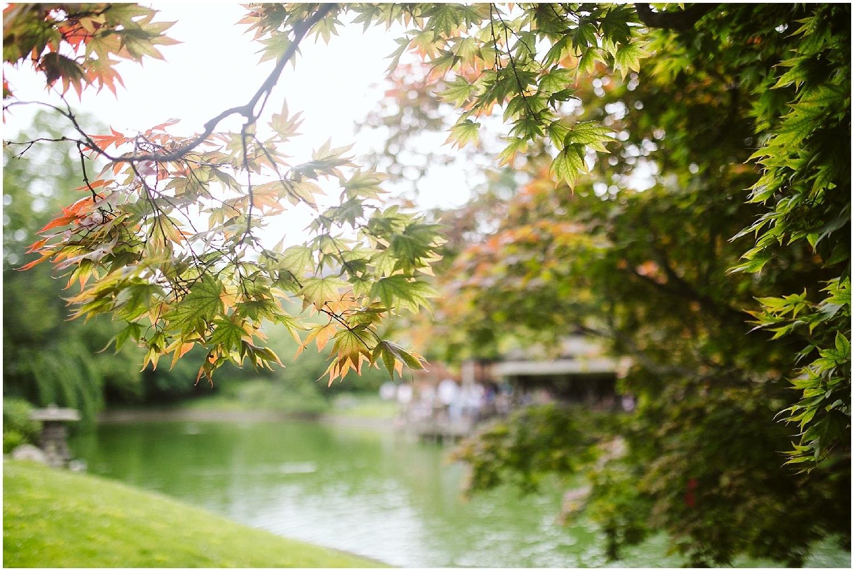 fall at japanese garden brooklyn botanic garden