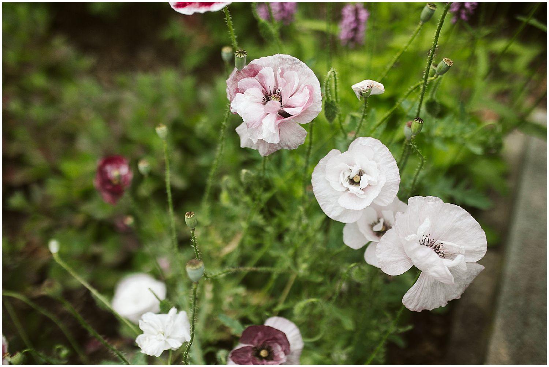 summer wedding at brooklyn botanic garden
