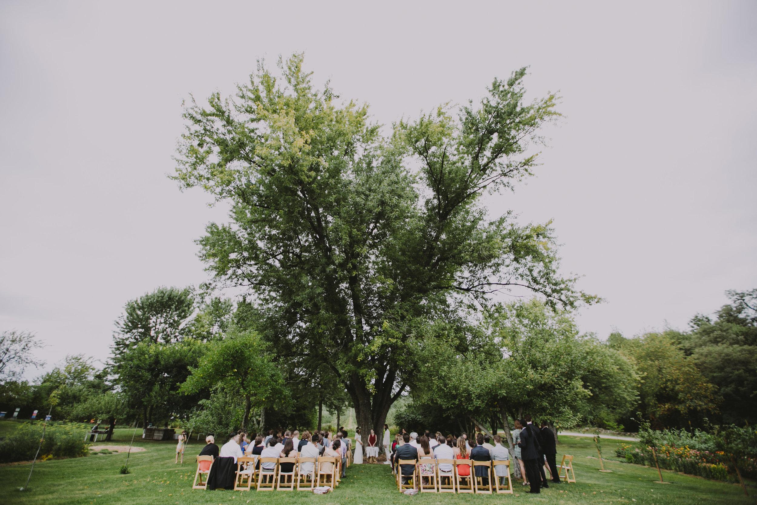 LIBERTY_VIEW_FARM_HIGHLAND_NY_WEDDING_CHELLISE_MICHAEL_PHOTOGRAPHY830.JPG