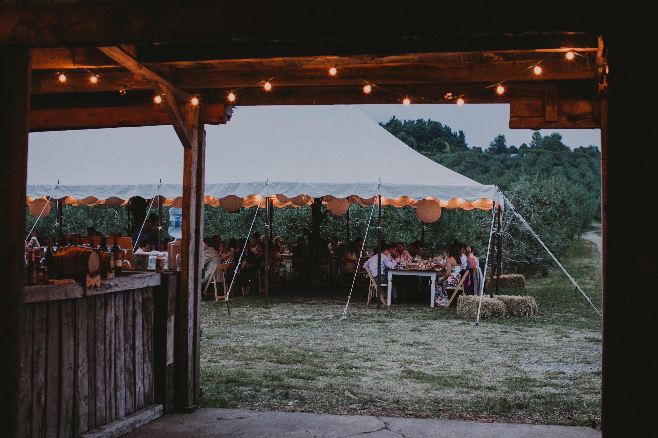LIBERTY_VIEW_FARM_HIGHLAND_NY_WEDDING_CHELLISE_MICHAEL_PHOTOGRAPHY869.JPG