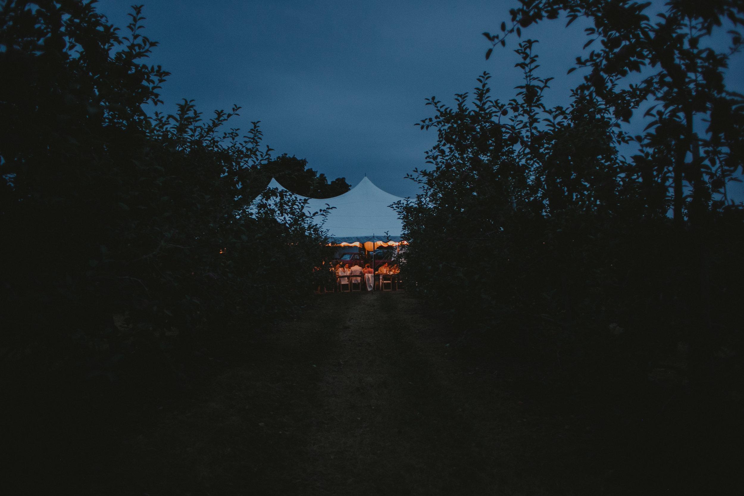 LIBERTY_VIEW_FARM_HIGHLAND_NY_WEDDING_CHELLISE_MICHAEL_PHOTOGRAPHY871.JPG
