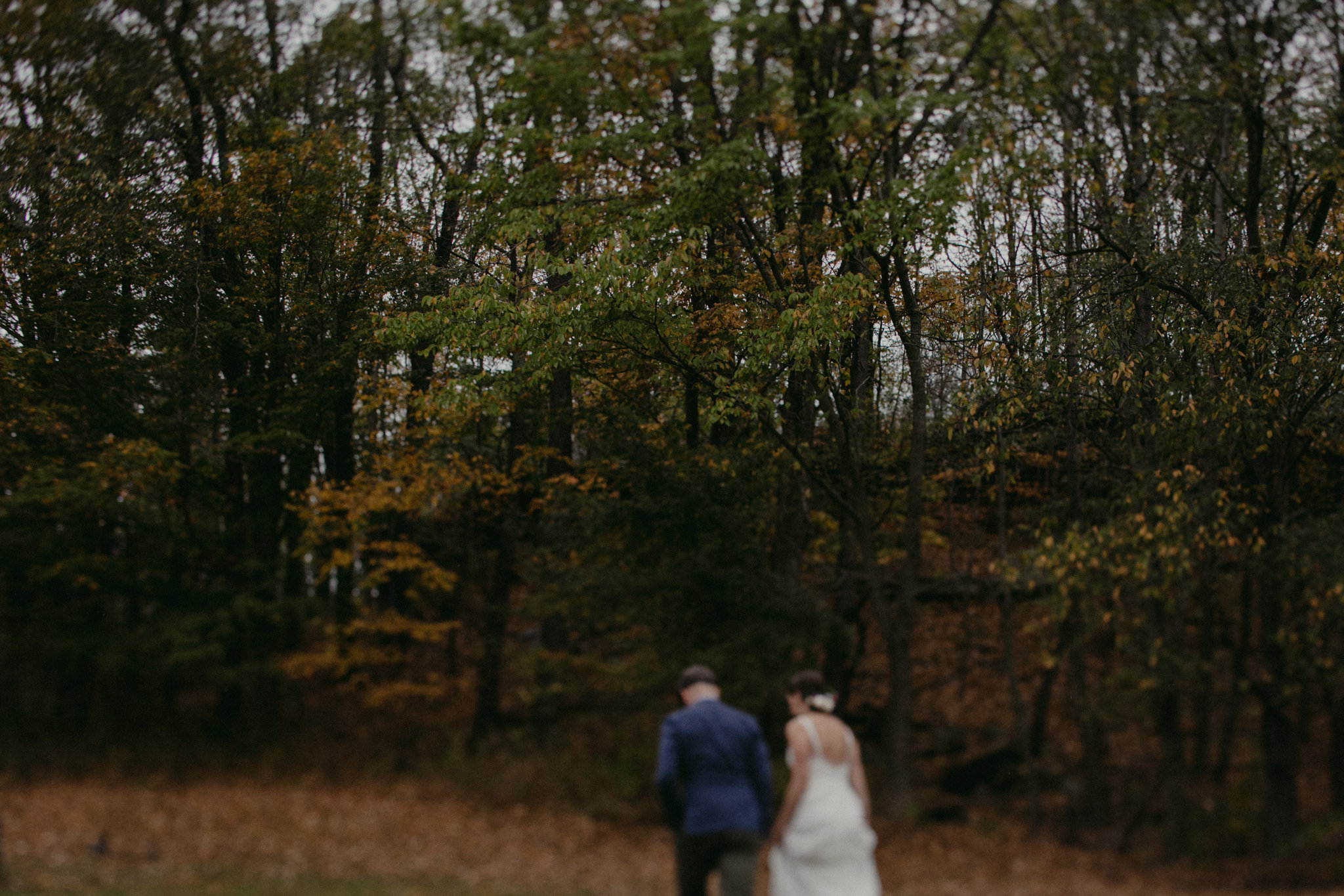Barn at Headwaters Wedding Roxbury NY by Chellise Michael Photography39.jpg