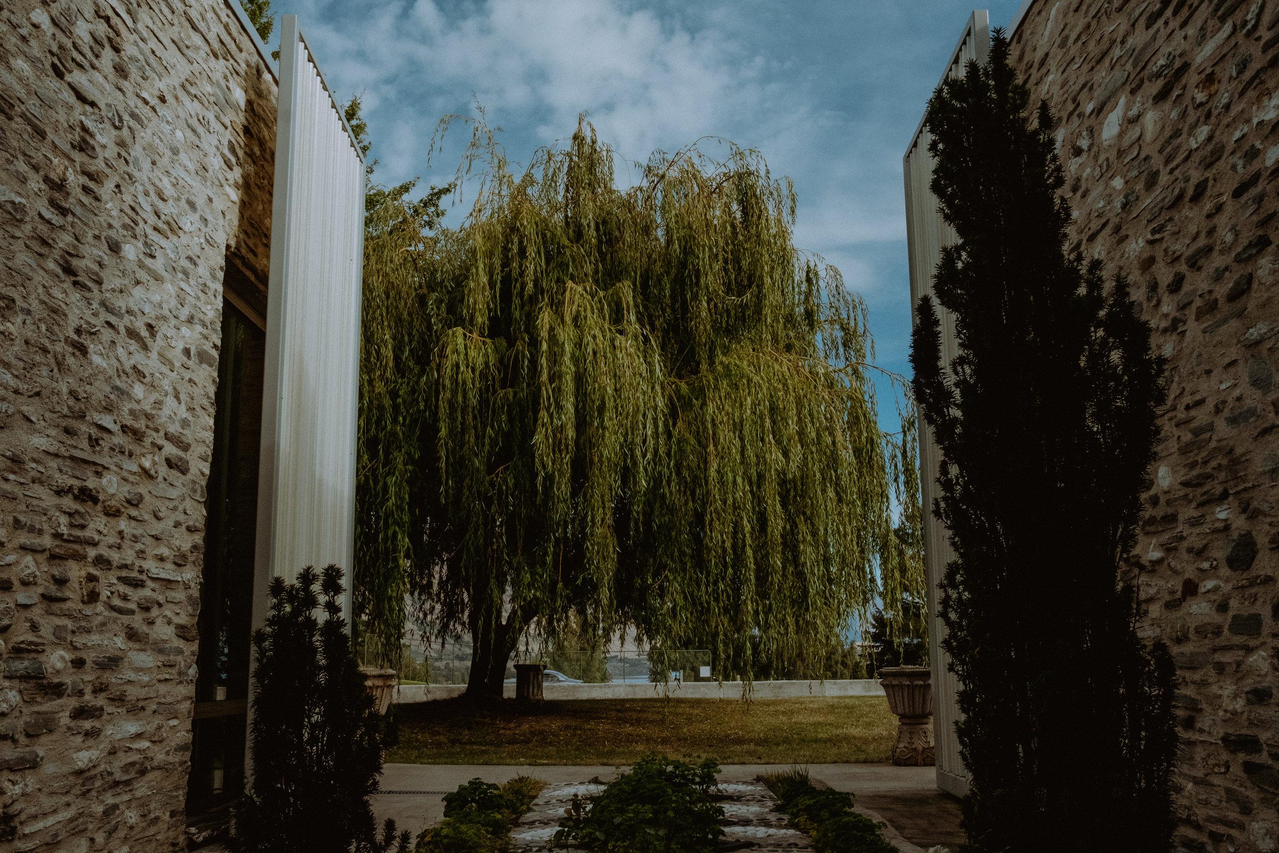 perrigrine wines wedding kseniya and travis chellise michael photography628.JPG