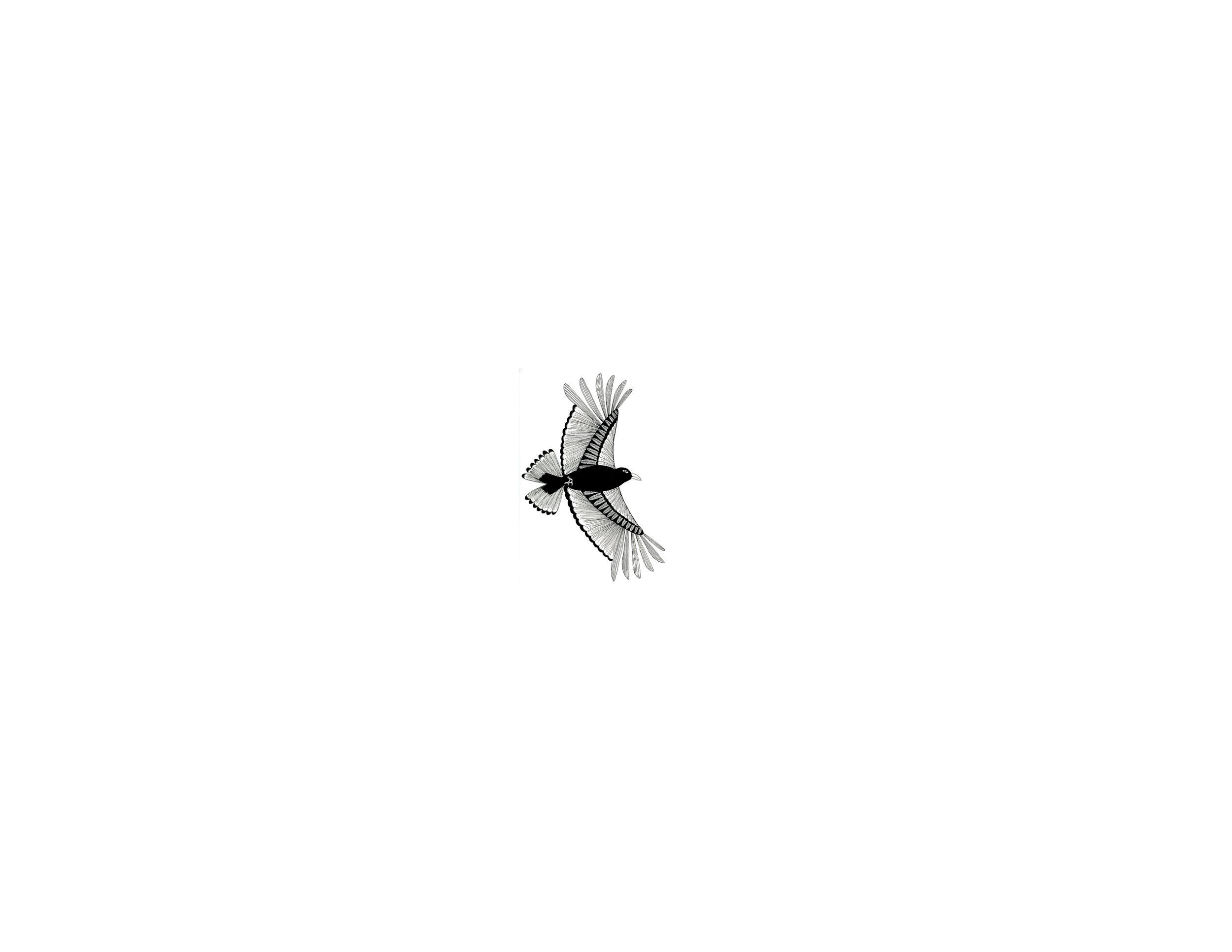 Crow Banner.jpg