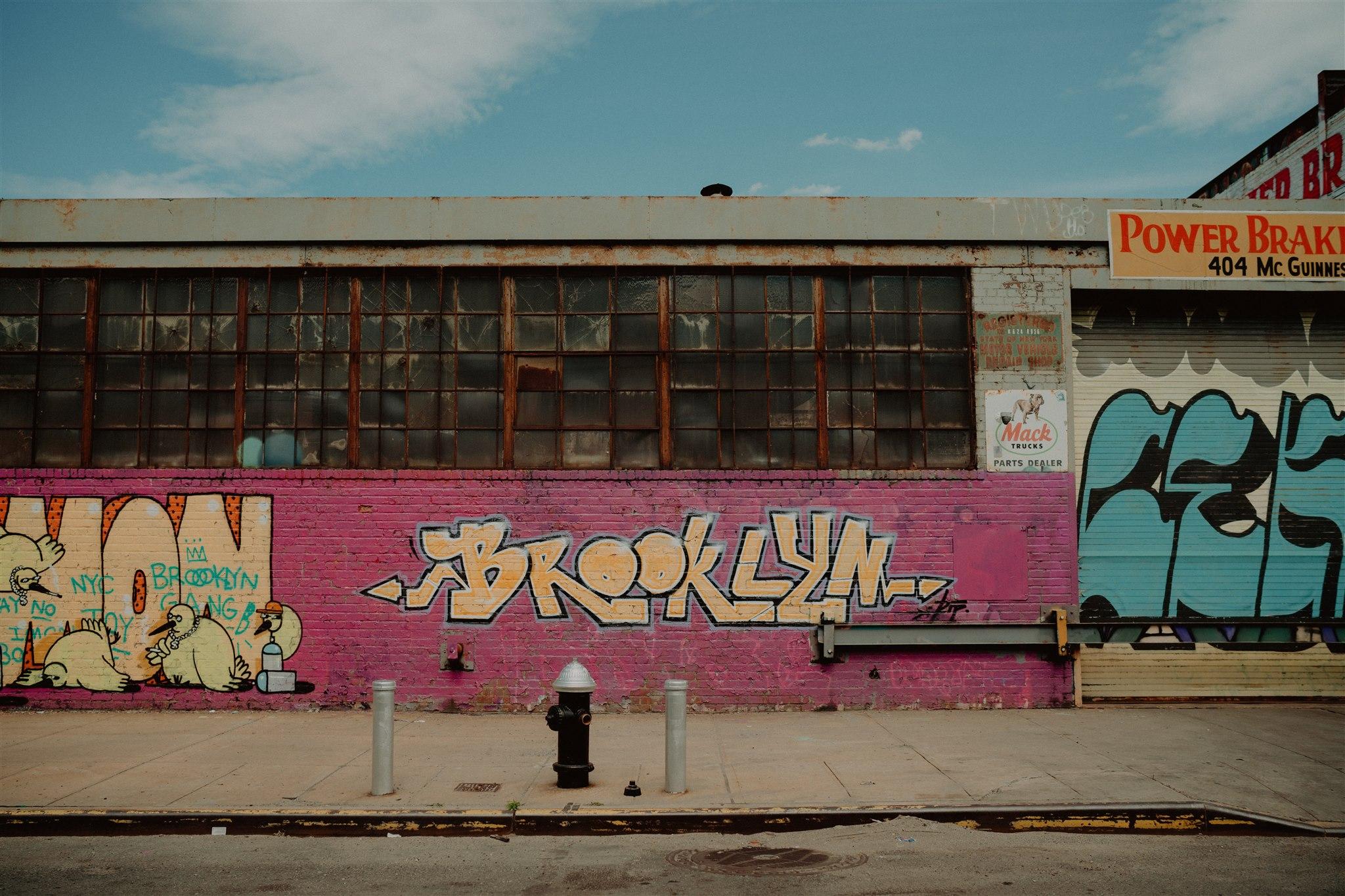 Chellise_Michael_Photography_Ramona_Brooklyn_Wedding_Photographer-245.jpg