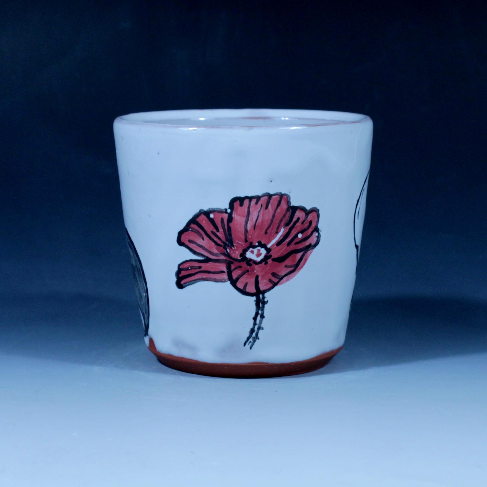 cupcondor05.JPG