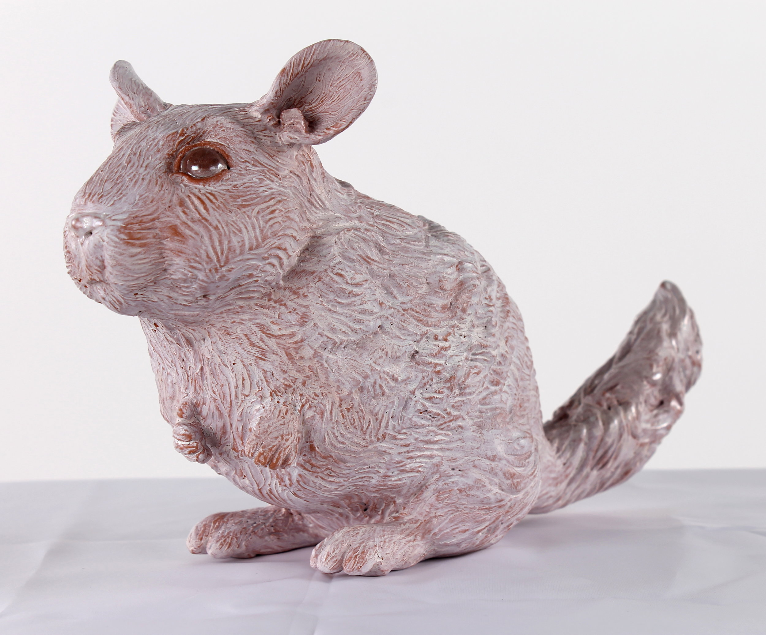 Chinchilla01.JPG