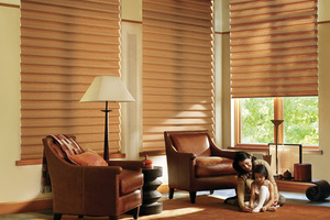 VIGNETTE® - A fashionable take on traditional Roman shades, our various Vignette® selections roll, stack, and traverse with consistent folds and no exposed rear cords for enhanced child and pet safety.