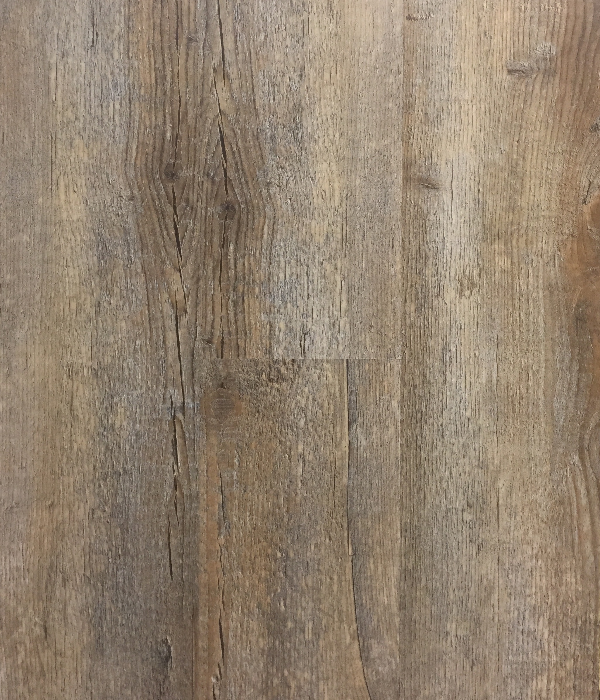504 Driftwood