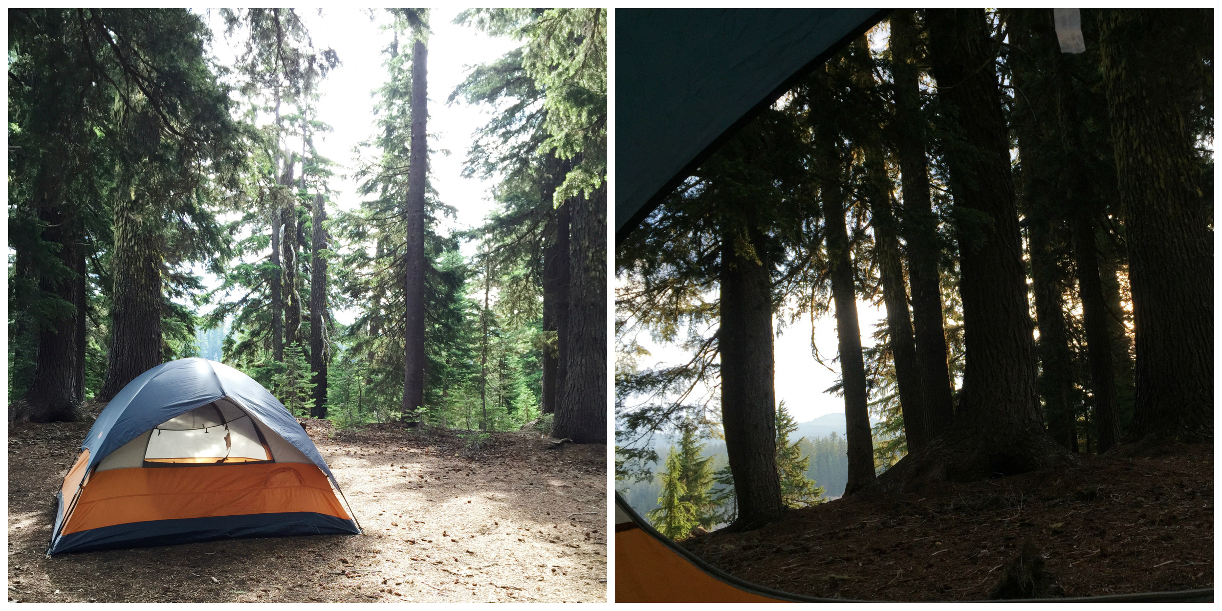 our serene tent site and morning view