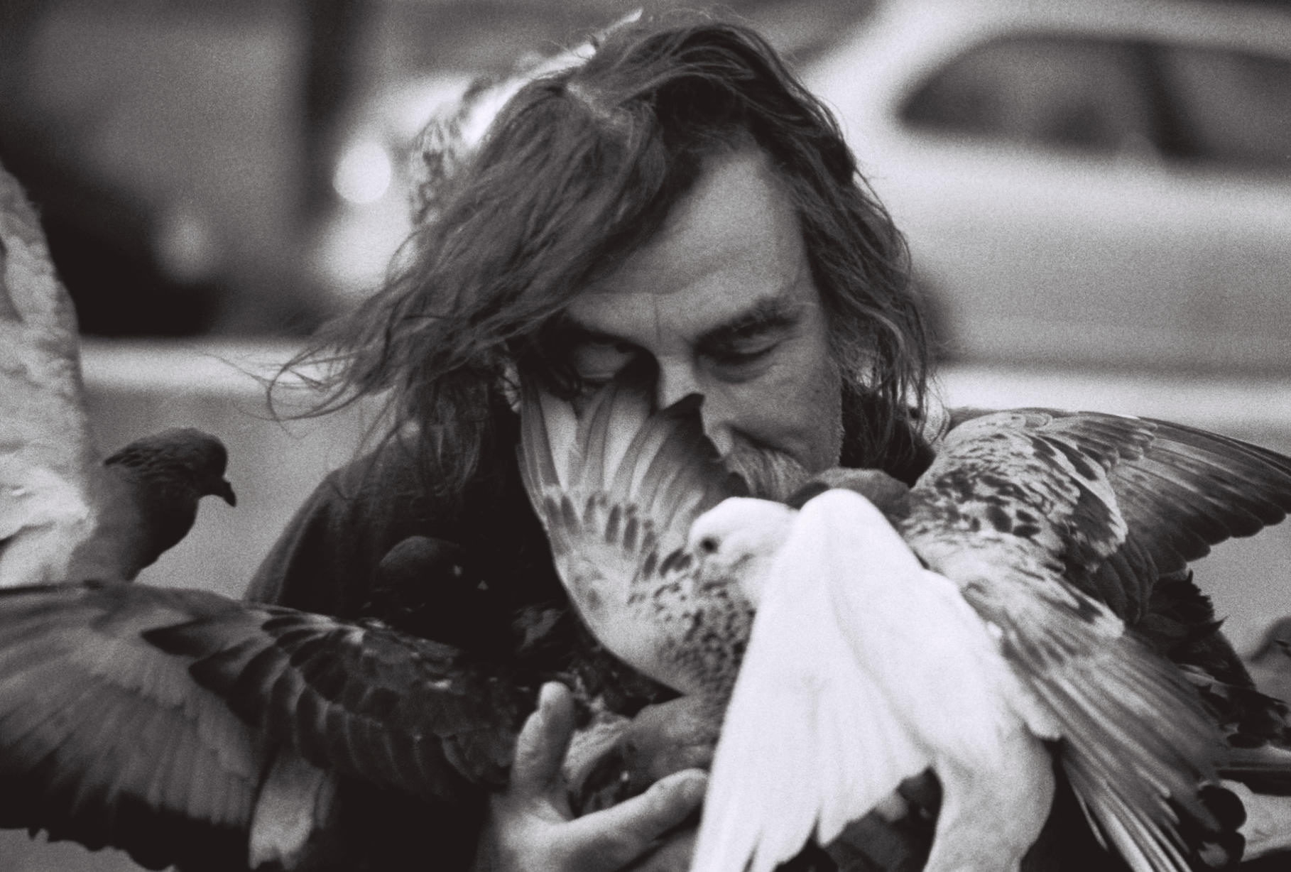 2. Paris Pigeon.jpg