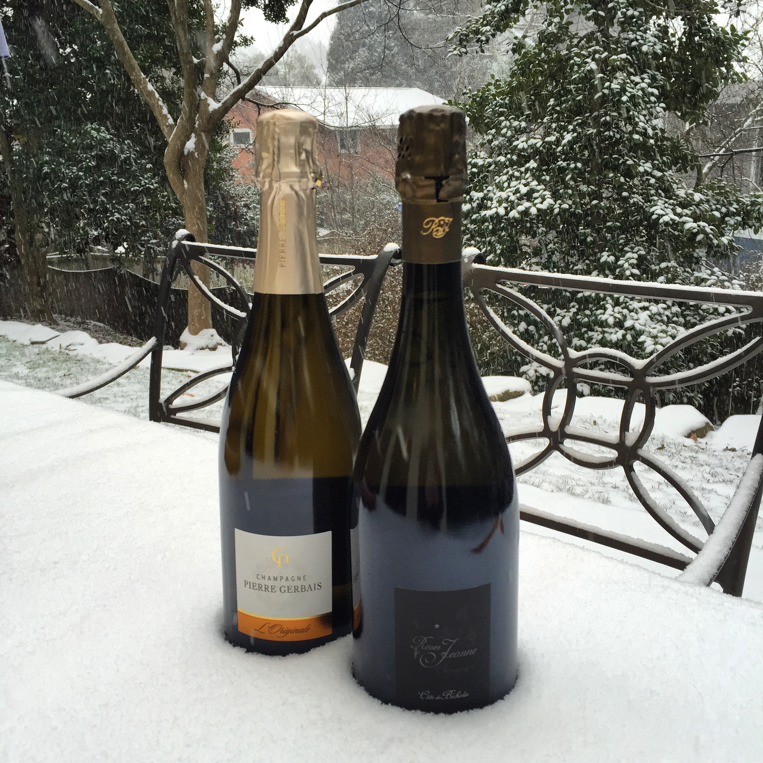 Champagnes from Celles-sur-Ource—Pierre Gerbais L'Originale and Roses de Jeanne Côte de Béchalin—chilling in the snow.