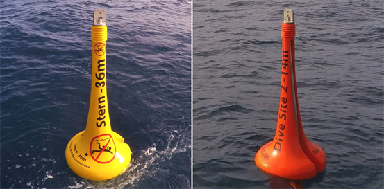 ASTROLABE REEF BUOYS