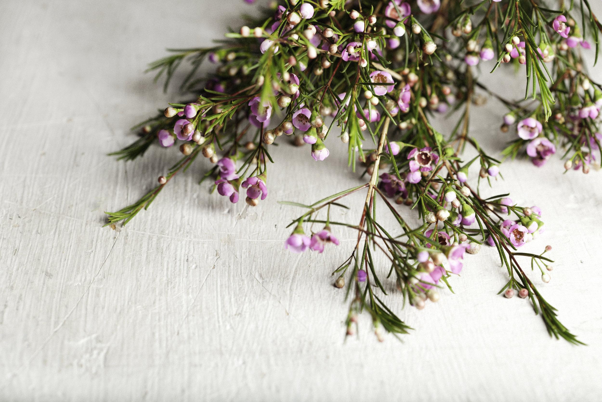 Flower Pounding Workshop by Honest Magazine