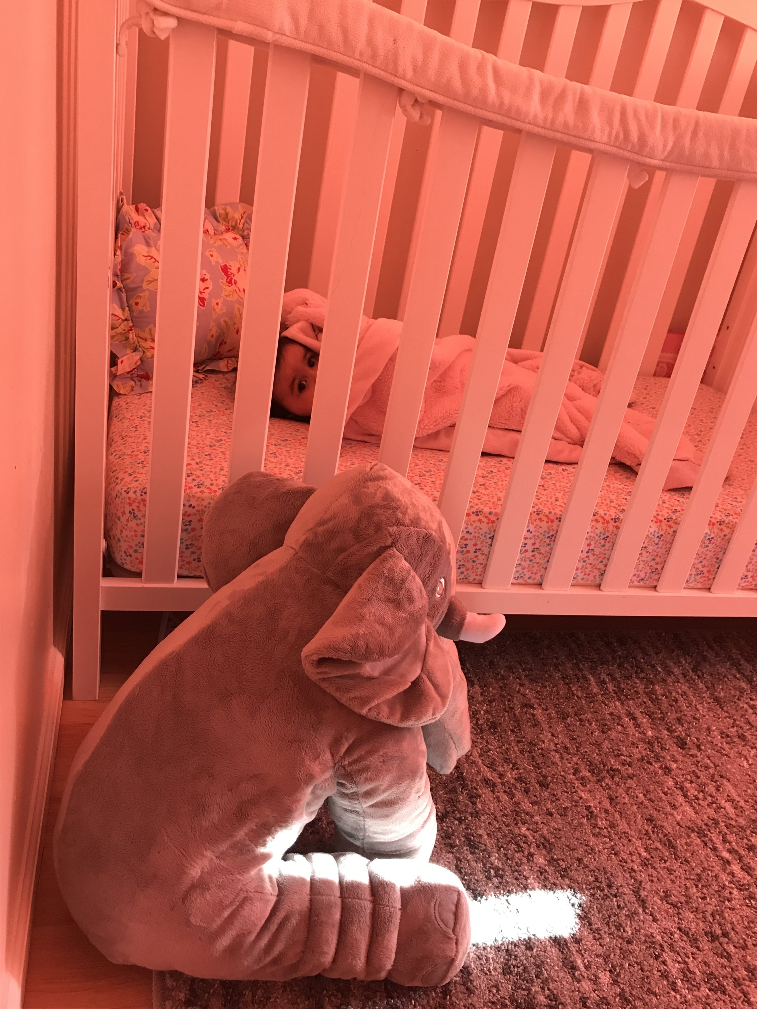 Plush Elephant Nursery
