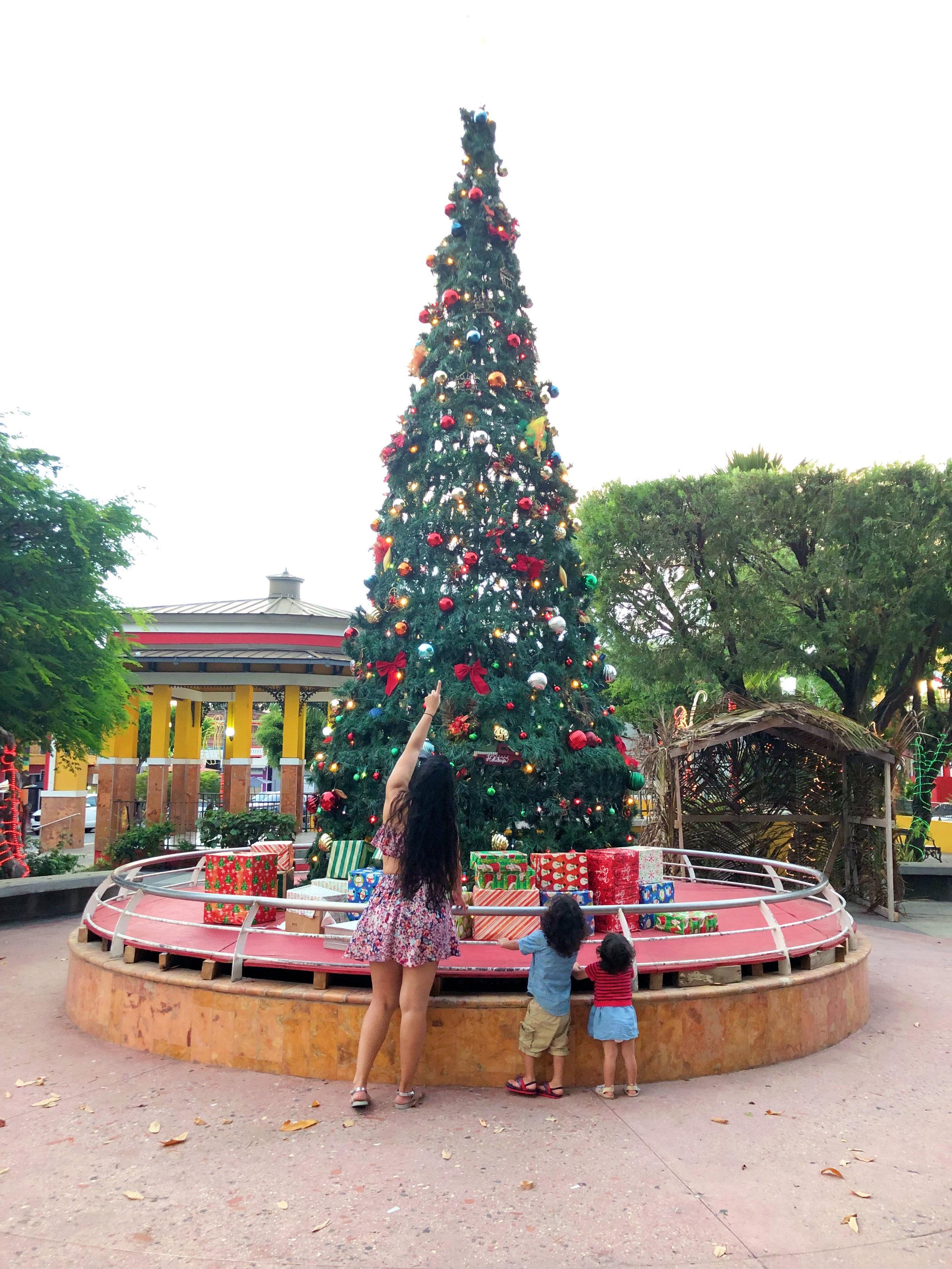 Plaza de Recreo Rincon
