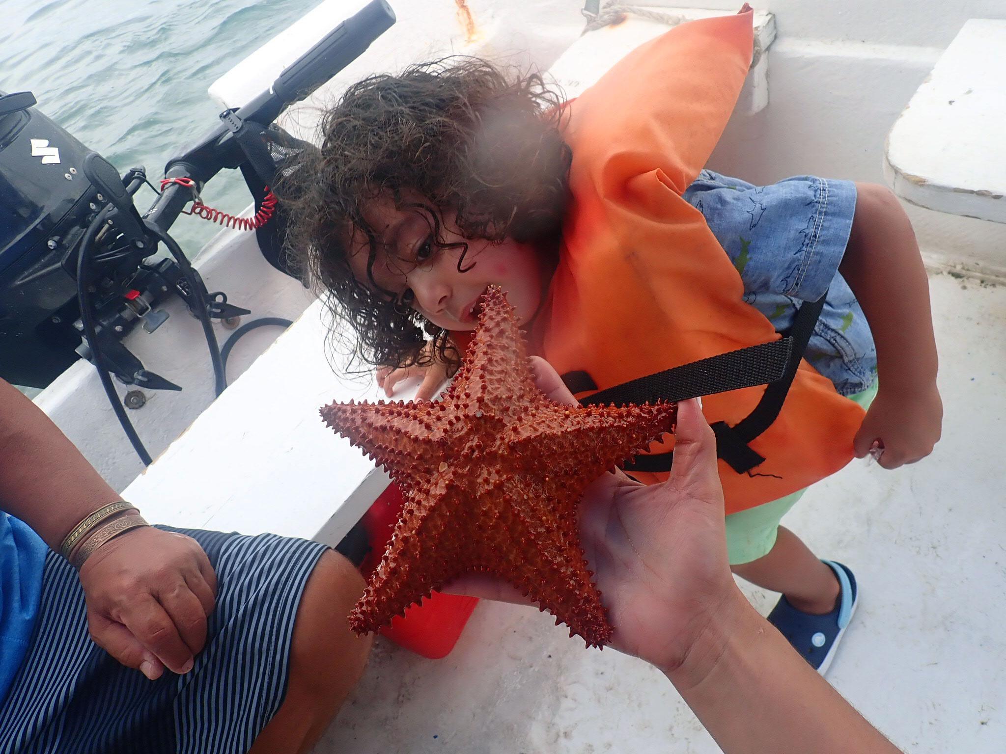 Starfish La Parguera.jpg