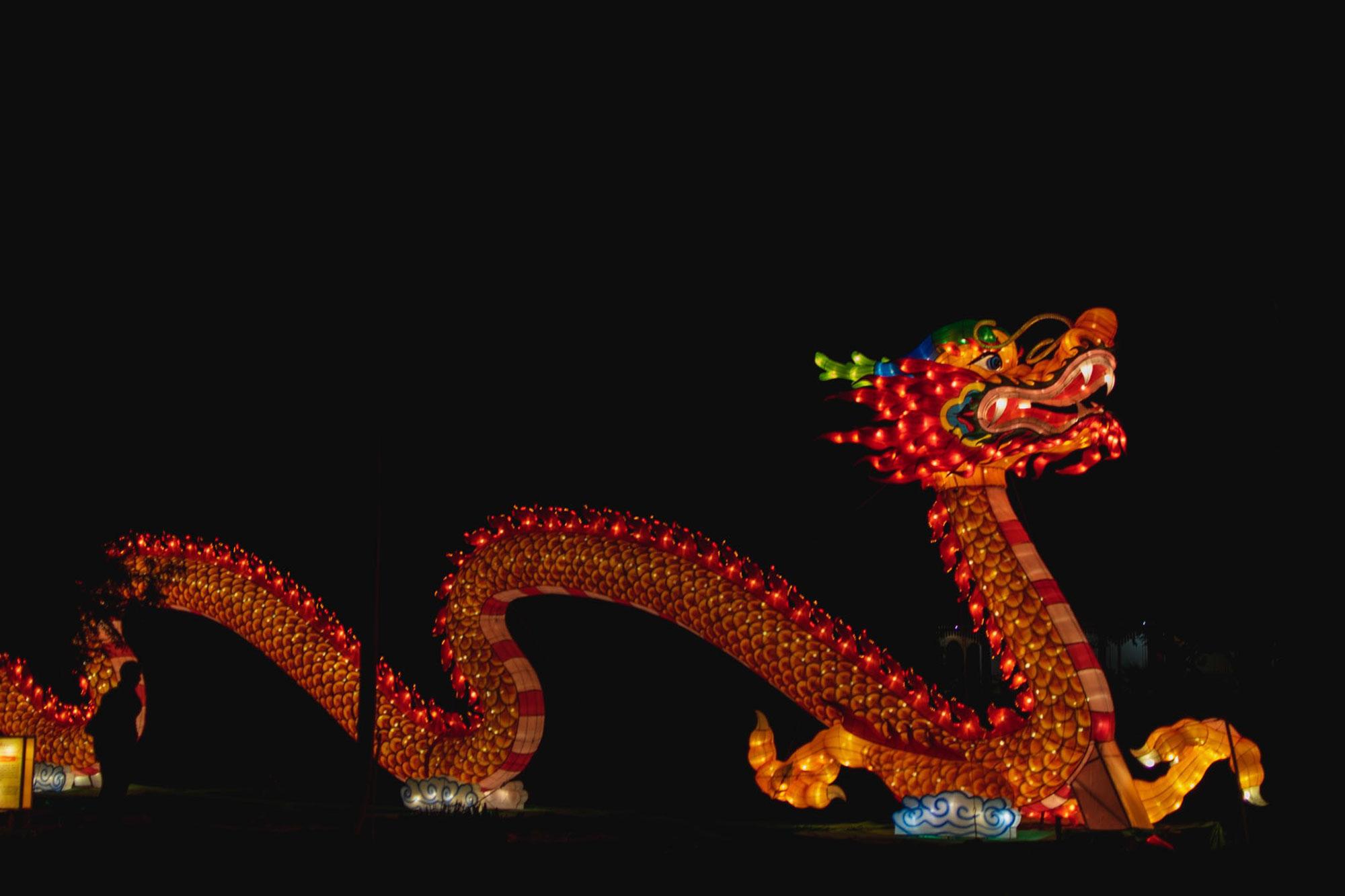 lantern dragon.jpg