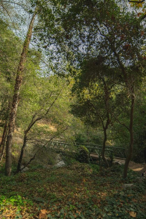 Sturtevant Falls Trail bridge