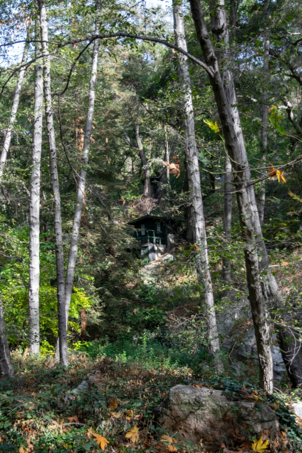 Sturtevant Falls Trail cabin 2