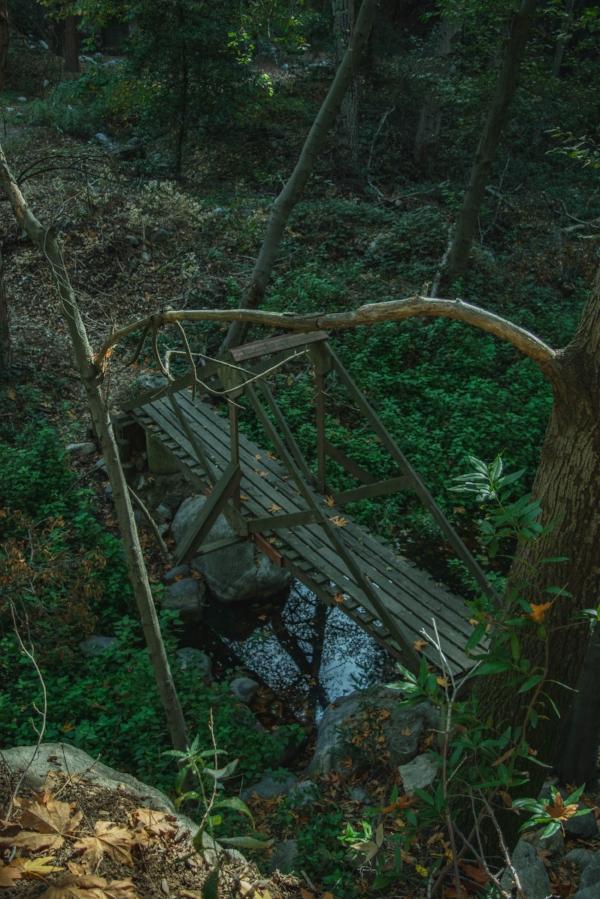 Sturtevant Falls Trail bridge 2