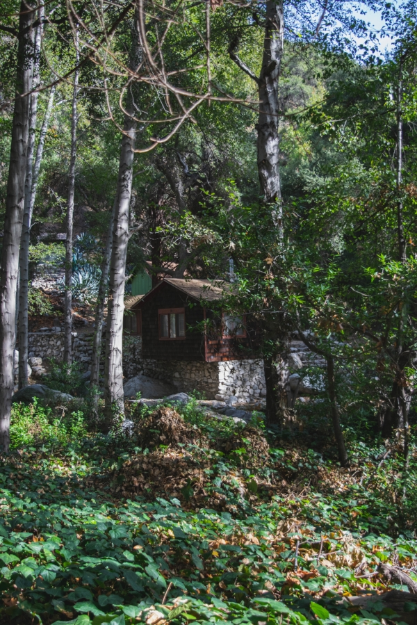 Sturtevant Falls Trail cabin 4
