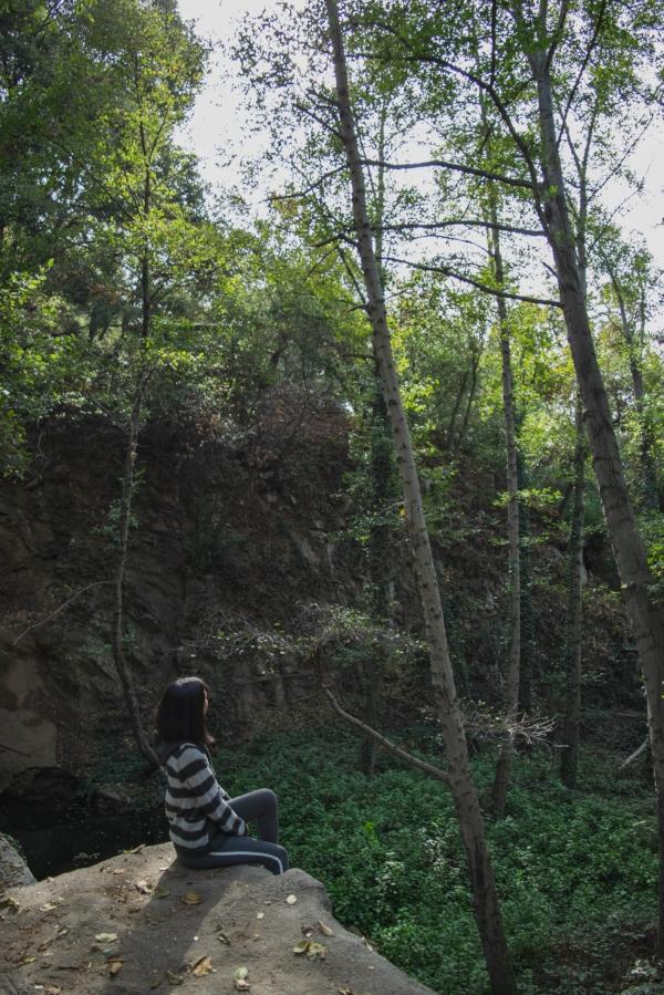 Sturtevant Falls Trail water dam 2