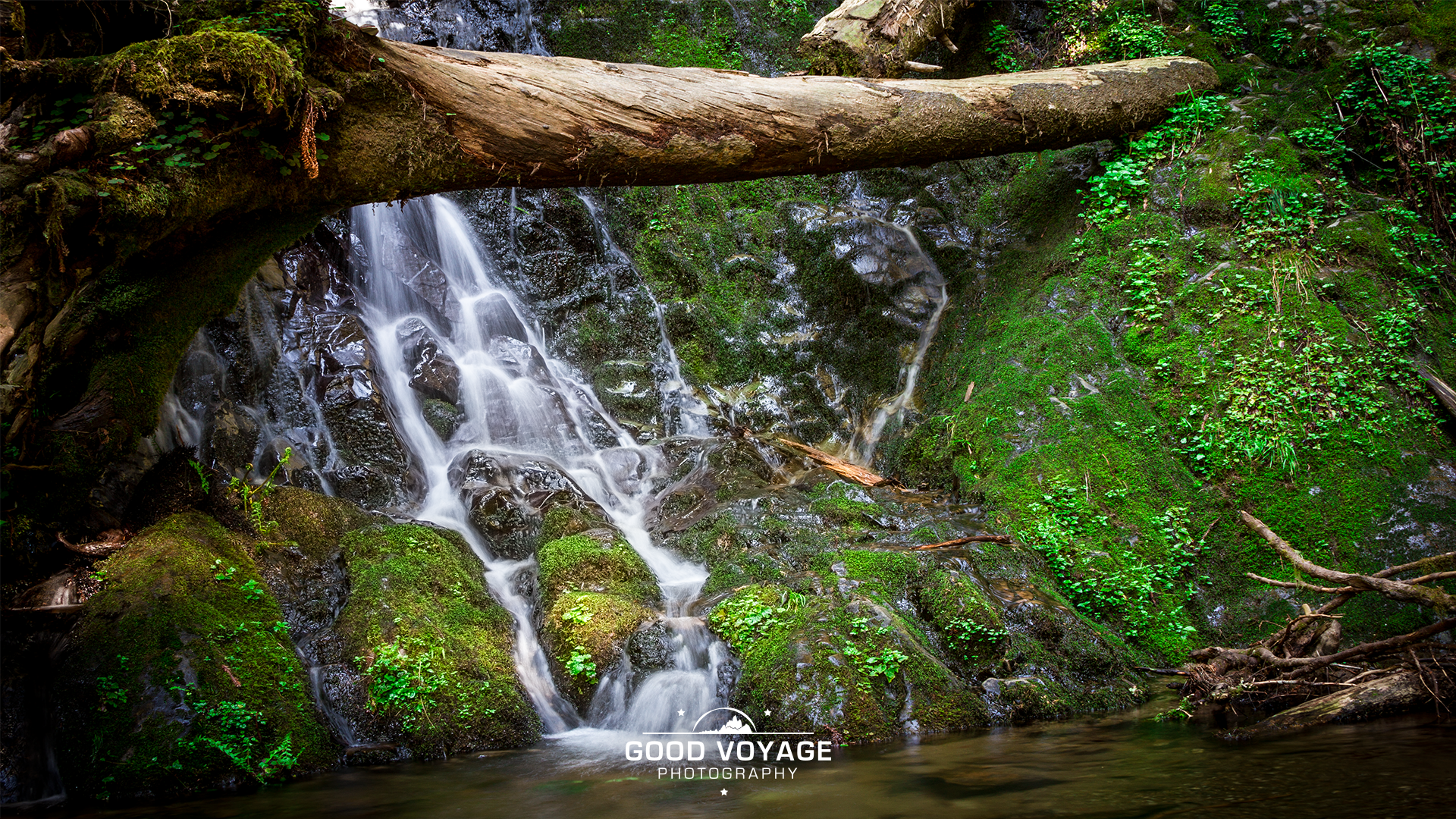 _0018_redwoodswaterfall.png