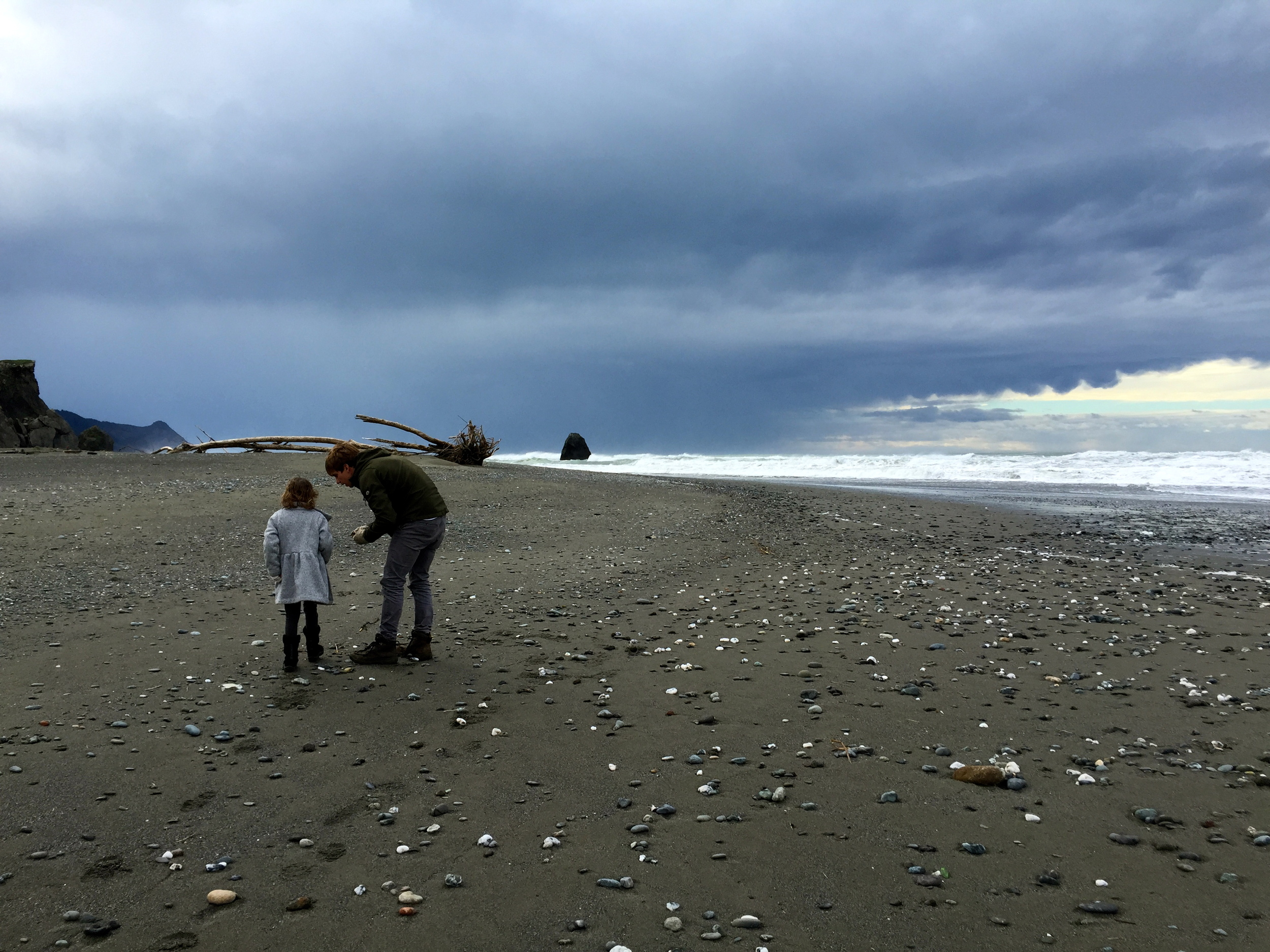 In Oregon you collect rocks by the seashores, not shells, sorry Sally.