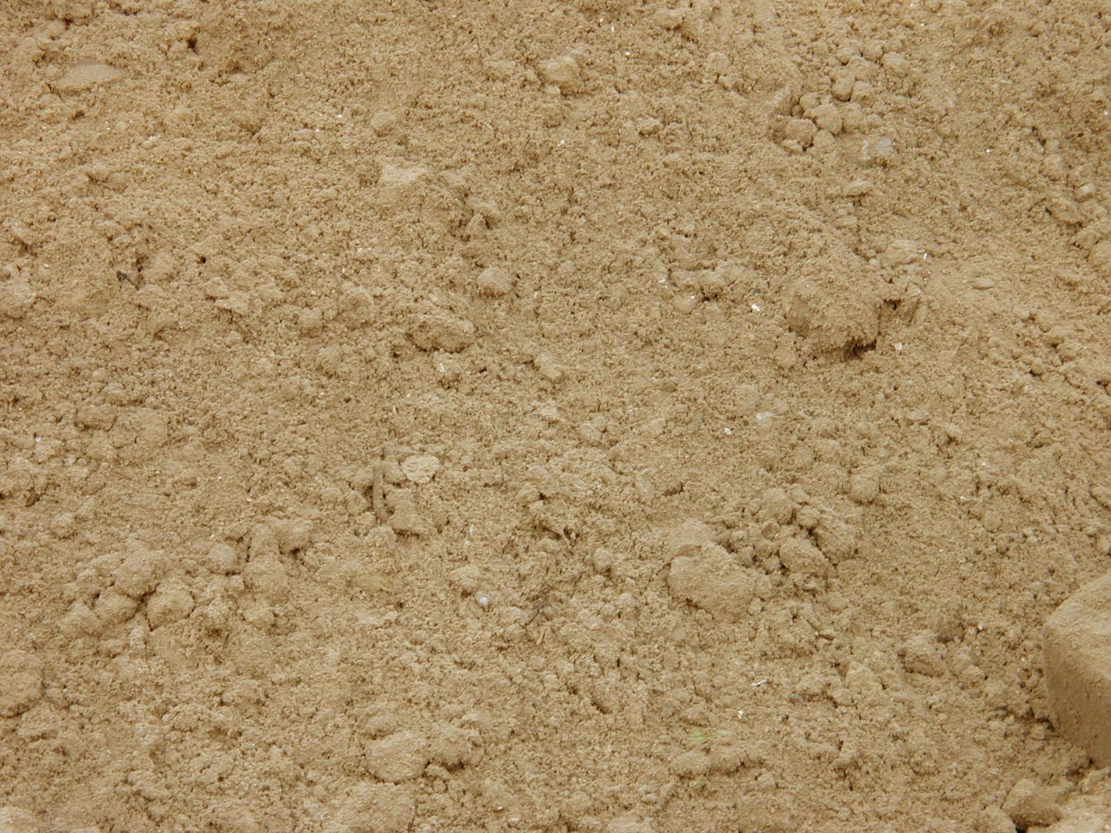 dirt5.jpg