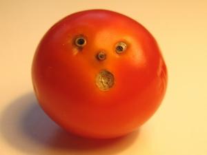 Tomato shock