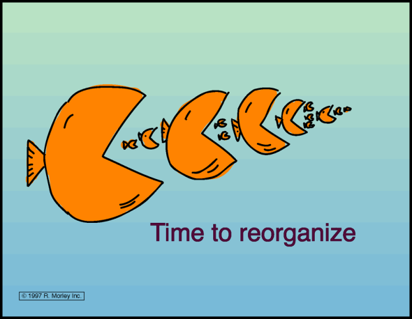 Time_to_Reorganize_2