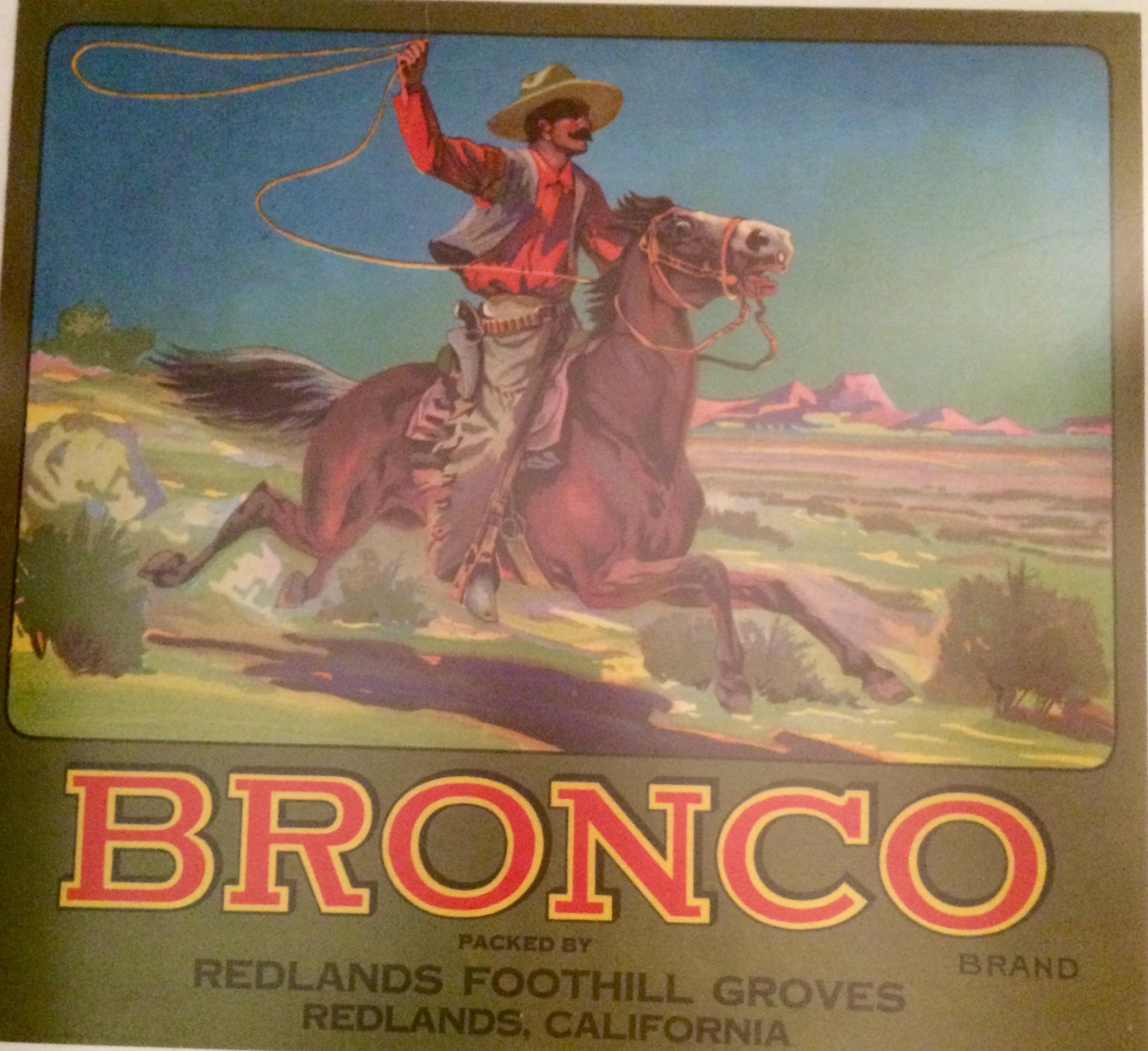 BroncoPoster