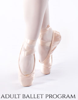 adult-ballet-buttom.jpg