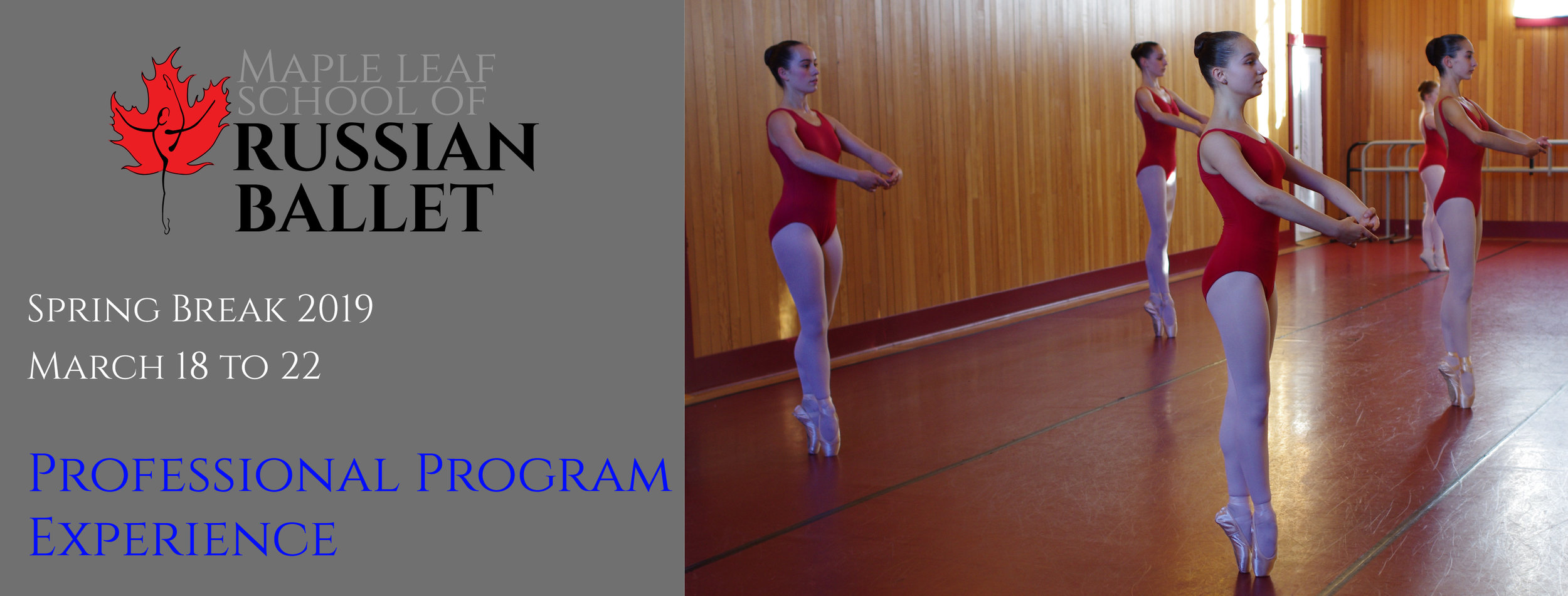 Professional Program Spring Experience SPring 2019-01.jpg