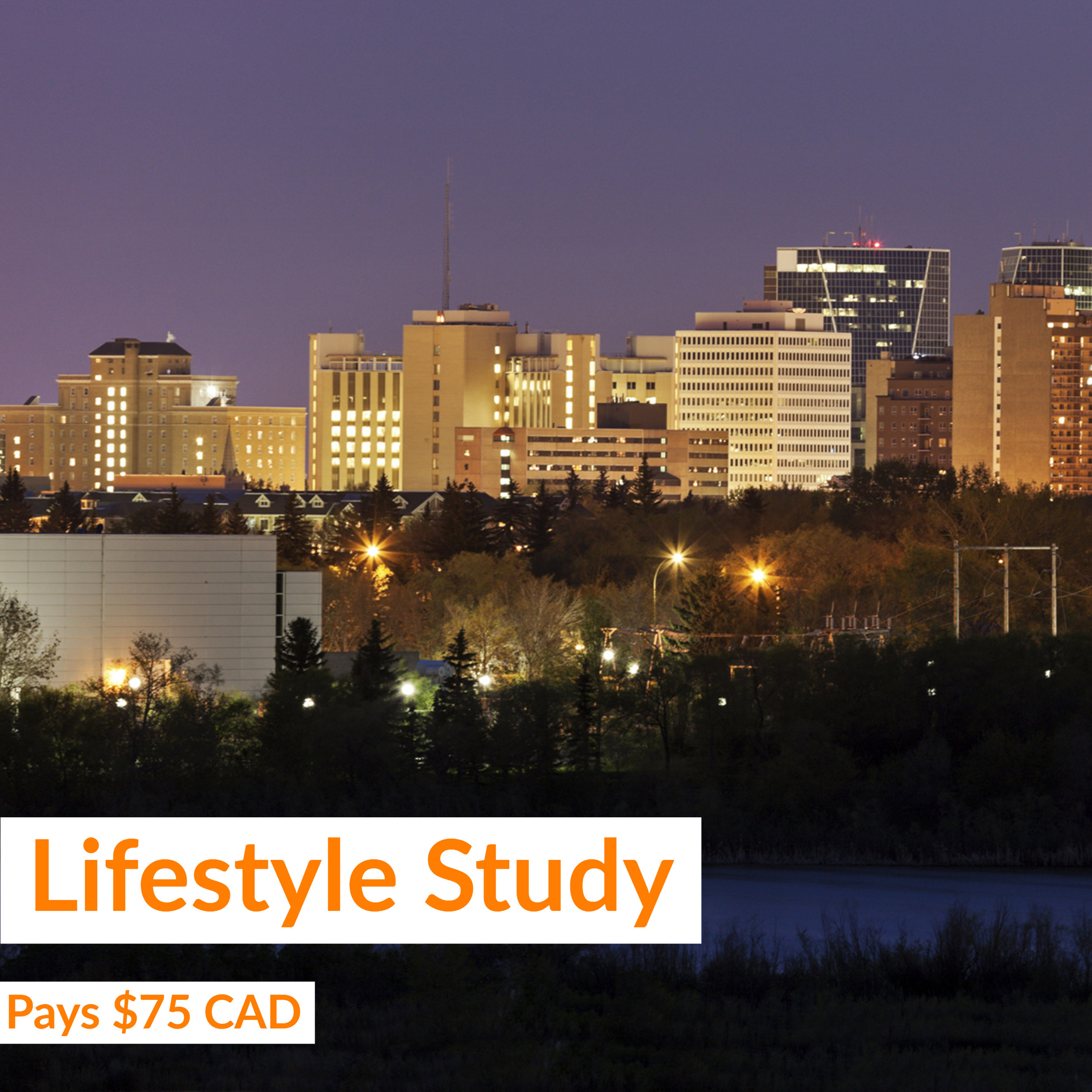 Gold & Gold Lifestyle Study.jpg