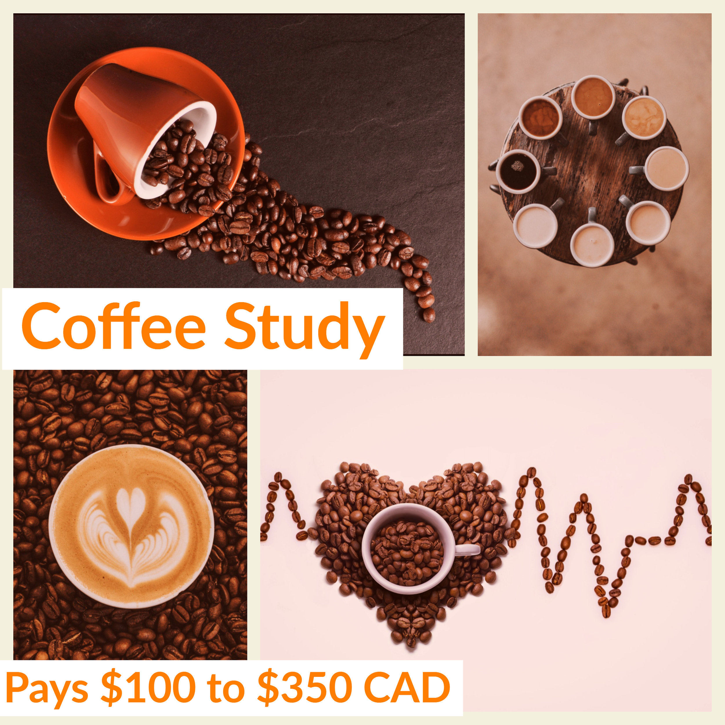 Gold & Gold Coffee Study (3).jpg
