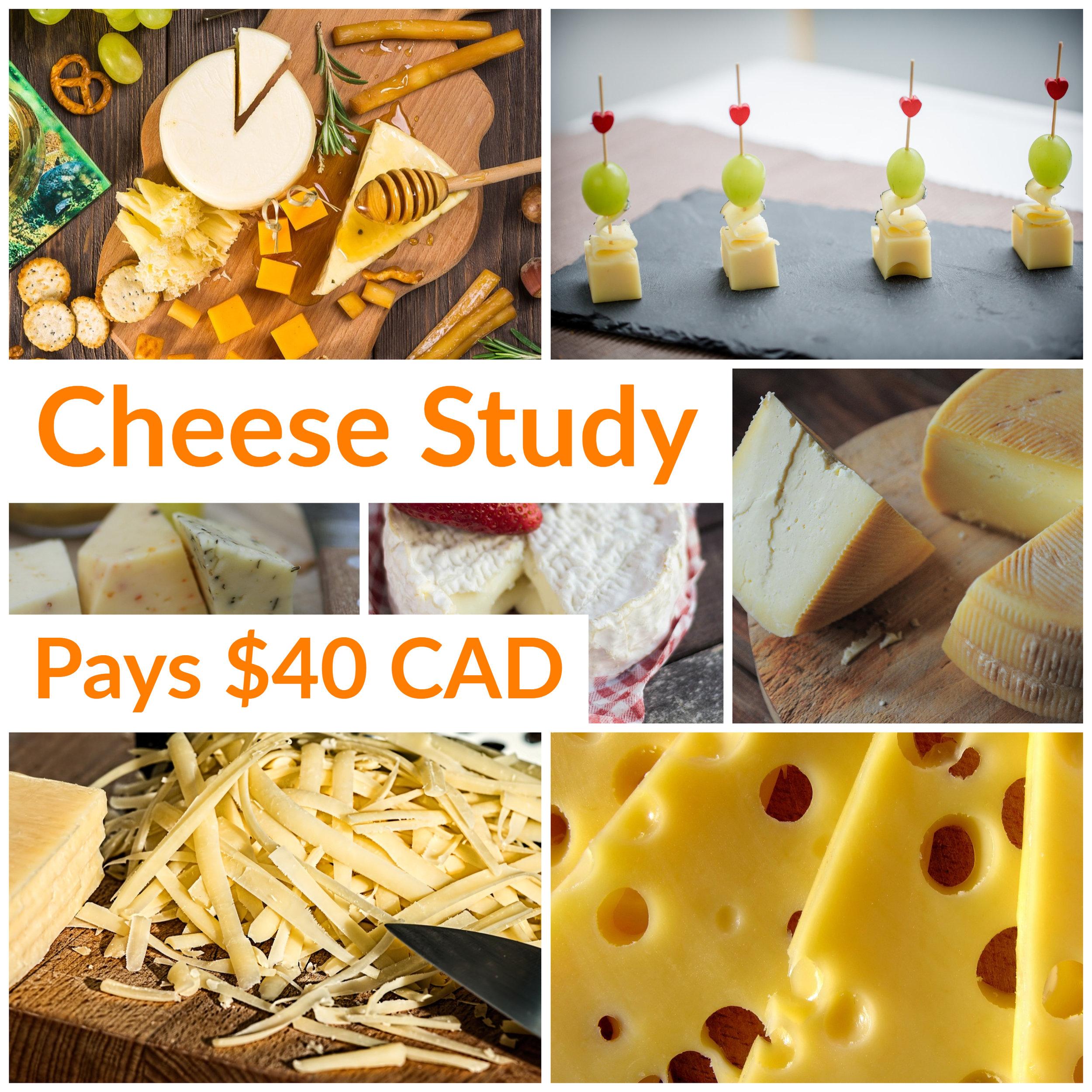 Gold & Gold Cheese Study (2).jpg