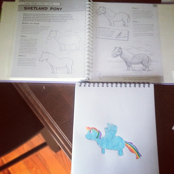 My Little Shetland Pony...? (age 7)