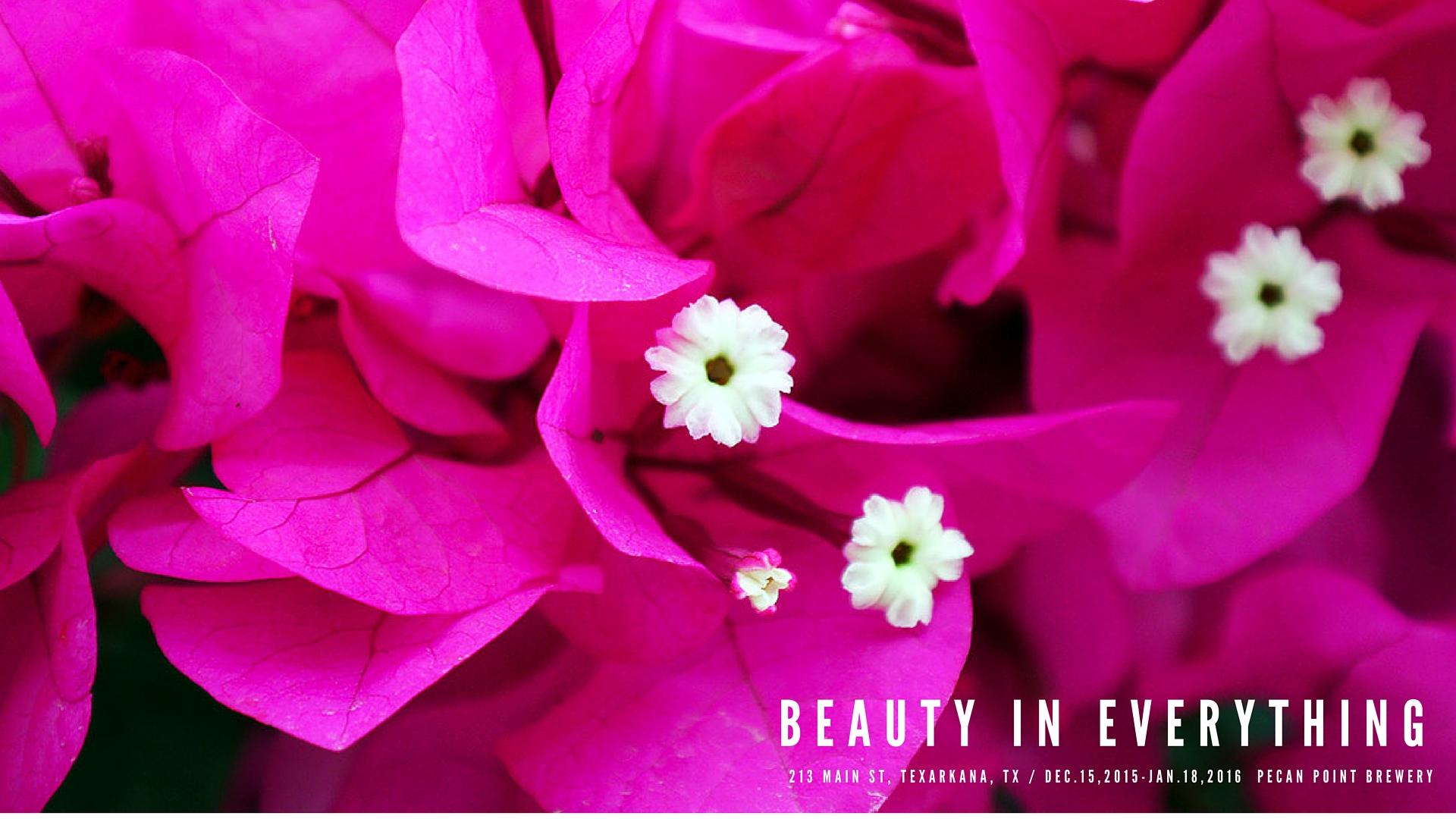 beauty in everything.jpg