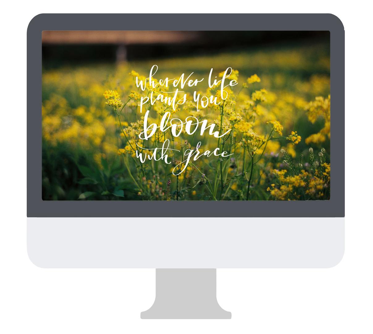 Desktop_Artwork_WhereverLife_OMAC.jpg