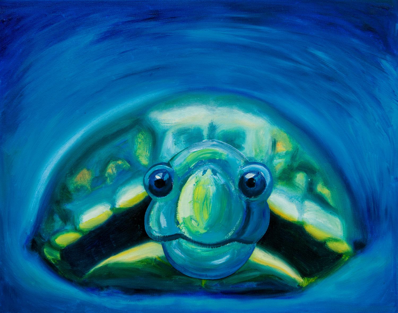 04_Turtle.jpg