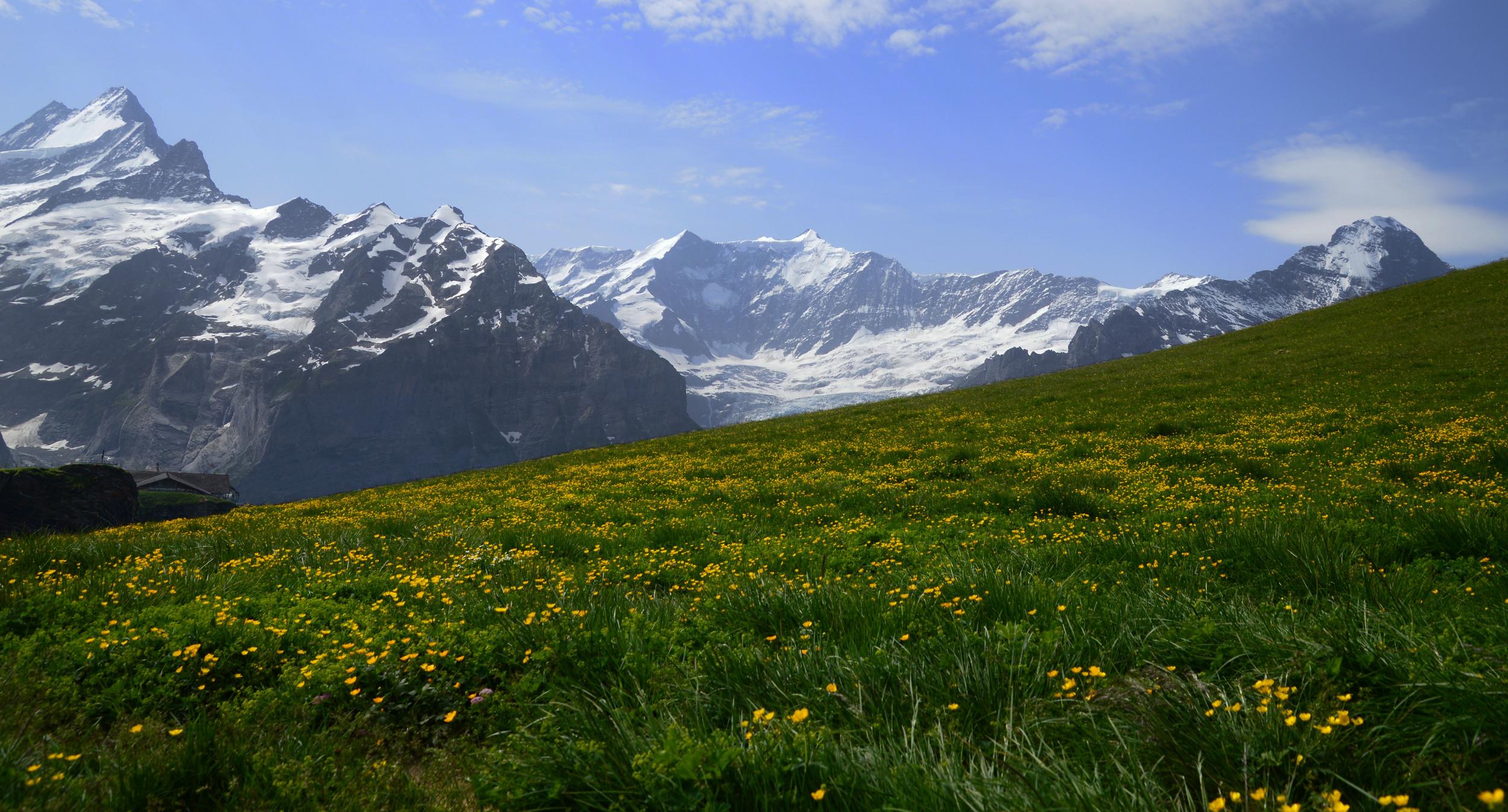 diagonal-mountain-alps.jpg