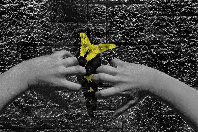 Between the Cracks - Ila Harding.jpg
