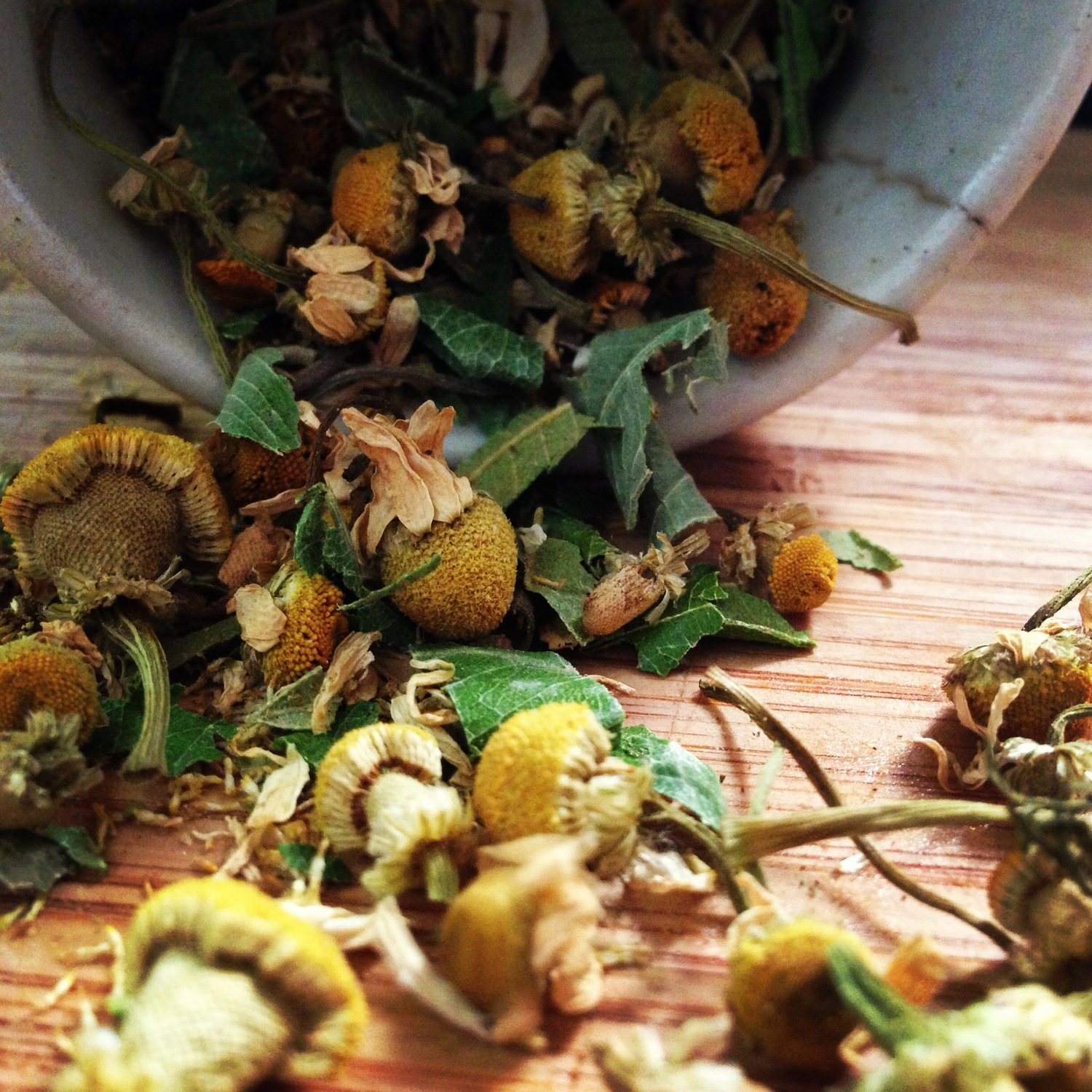 camille chamomile tea blend   Blended using locally harvested lemon myrtle from Newtown this lovely tipple will calm the nerves, refresh the soul and detox the body... Triple threat!  Enjoy straight up, no milk.  INGREDIENTS & INFO   Chamomile, lemon myrtle, ginger